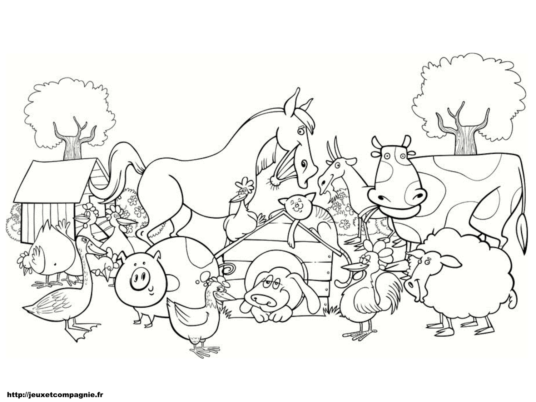 La ferme du Perrier: Les jeux