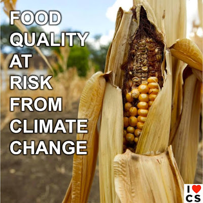 Poster of the Week - Food Quality at Risk from Climate Change (Credit: www.facebook.com/iheartcomsci)