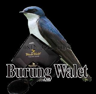 sabun walet black, sabun walet black asli, sabun walet bpom