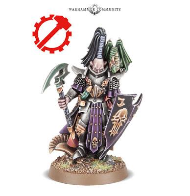 Héroe Corsario Elfo Oscuro