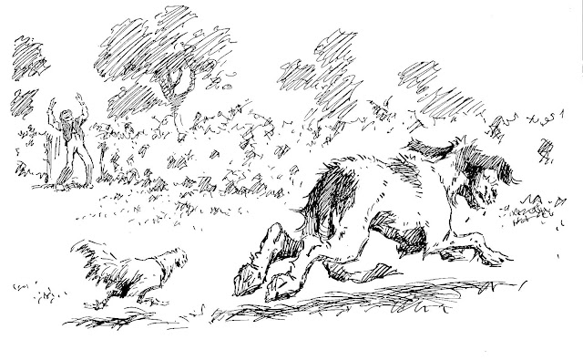 A.B. Frost illustration of a rooster chasing a dog
