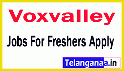 Voxvalley Recruitment Jobs For Freshers Apply