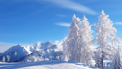 Winter Beautiful view