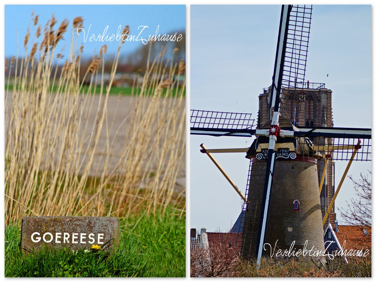 "Goedereede in Netherlands. Mill ""de windvang"""