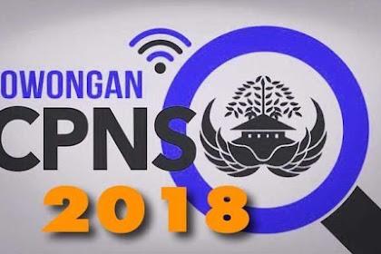 8 Formasi CPNS di Daerah ini Masih Lowong, Ayo Buruan