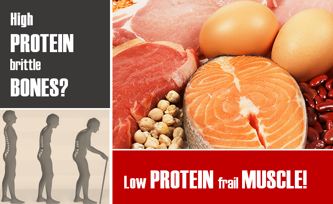 high protein diet increase risk of calcium loss