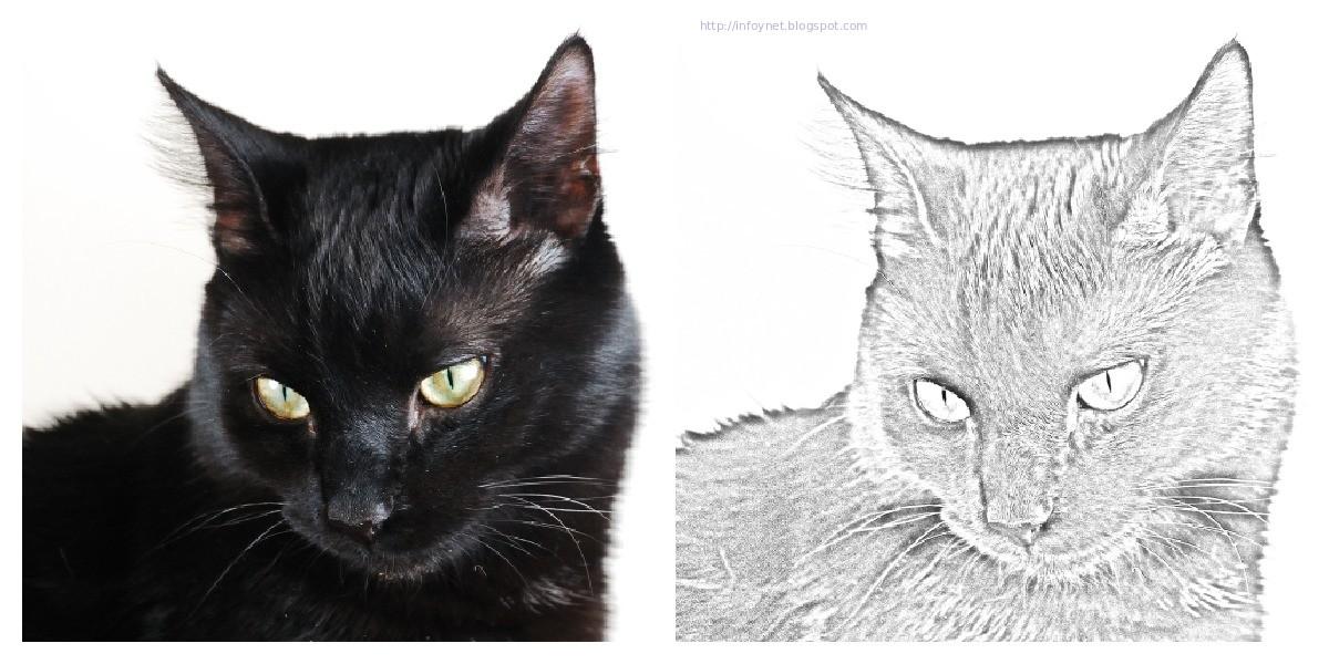 InfoNet: Convertir una foto a color en un dibujo en blanco y negro ...
