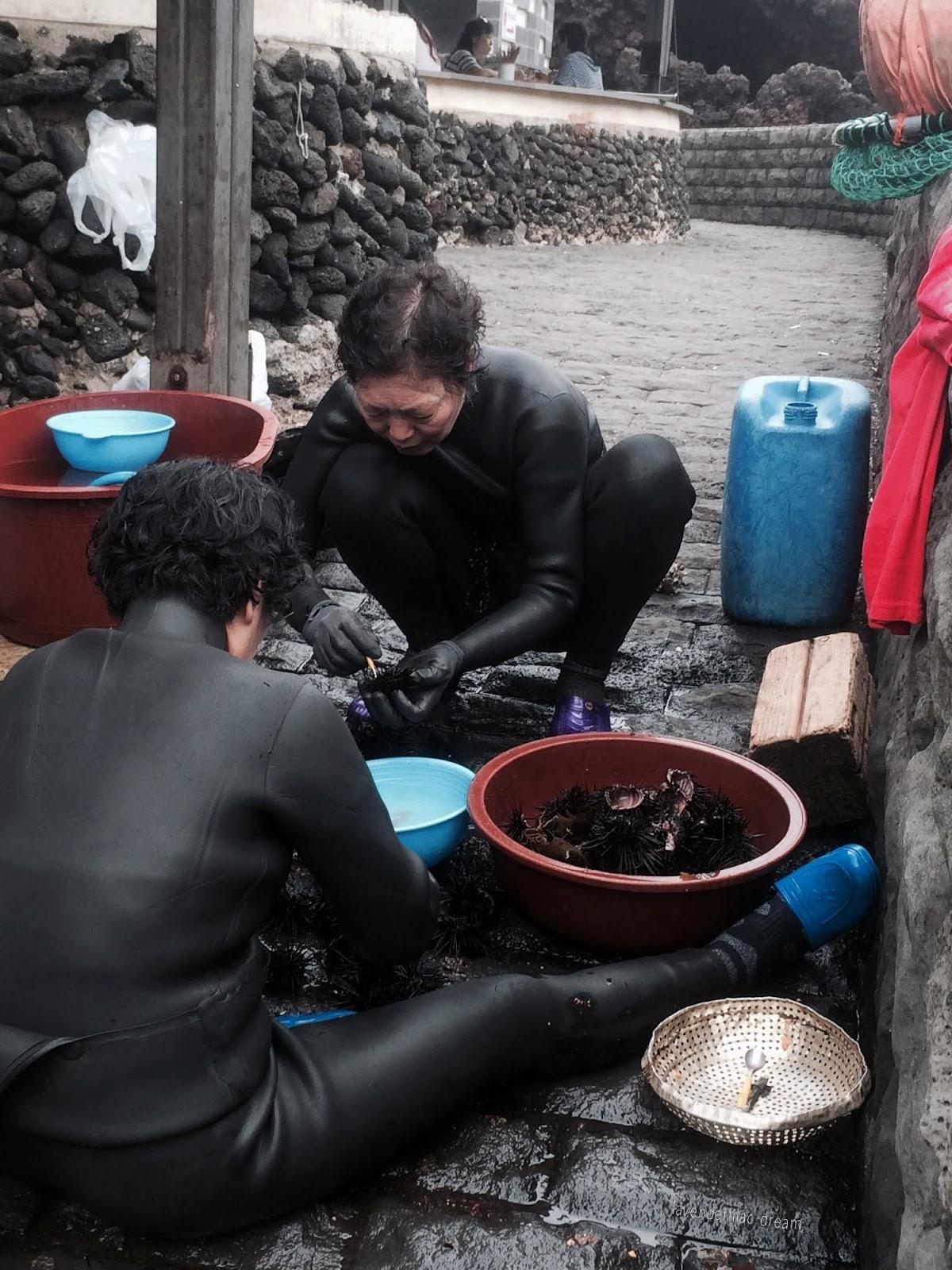 South Korea, Jeju Island, Yonsei University, YISS 2014, Sunrise Peak female divers