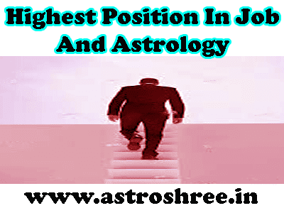 highest position in job by astrology, astrologer for career