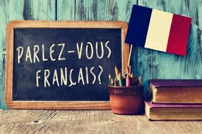 تجميعية لكتب مهمة لكل أستاذ يدرس اللغة الفرنسية بالمرحلة الابتدائية