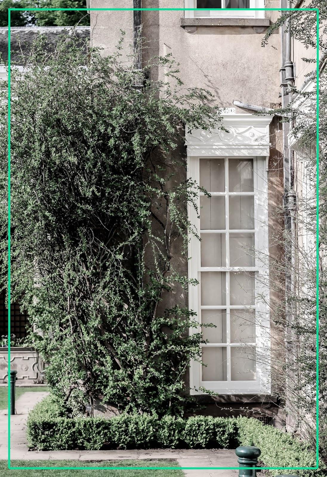 Beautiful Countryside English Manor Windows