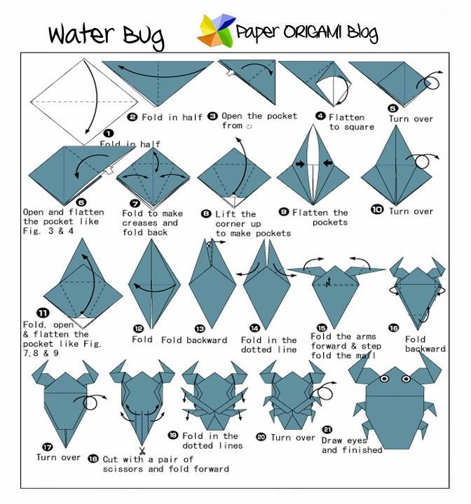 3d Origami Diagram Animals School Bus Parts Bug Origami: Water   Paper Guide