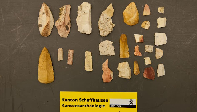 Stone Age tools found under tree uprooted by storm in northern Switzerland
