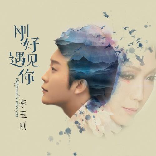 Li Yu Gang 李玉剛 - Gang Hao Yu Jian Ni 剛好遇見你 Lyrics 歌詞 with English Translation - Musicacrossasia