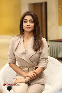 Actress Shriya Saran Stills in Stylish Dress at Gautamiputra Satakarni Team Press Meet  0126.JPG