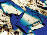 Pentingnya Karakterisasi Reservoar Batuan Karbonat dalam Eksplorasi Minyak Bumi