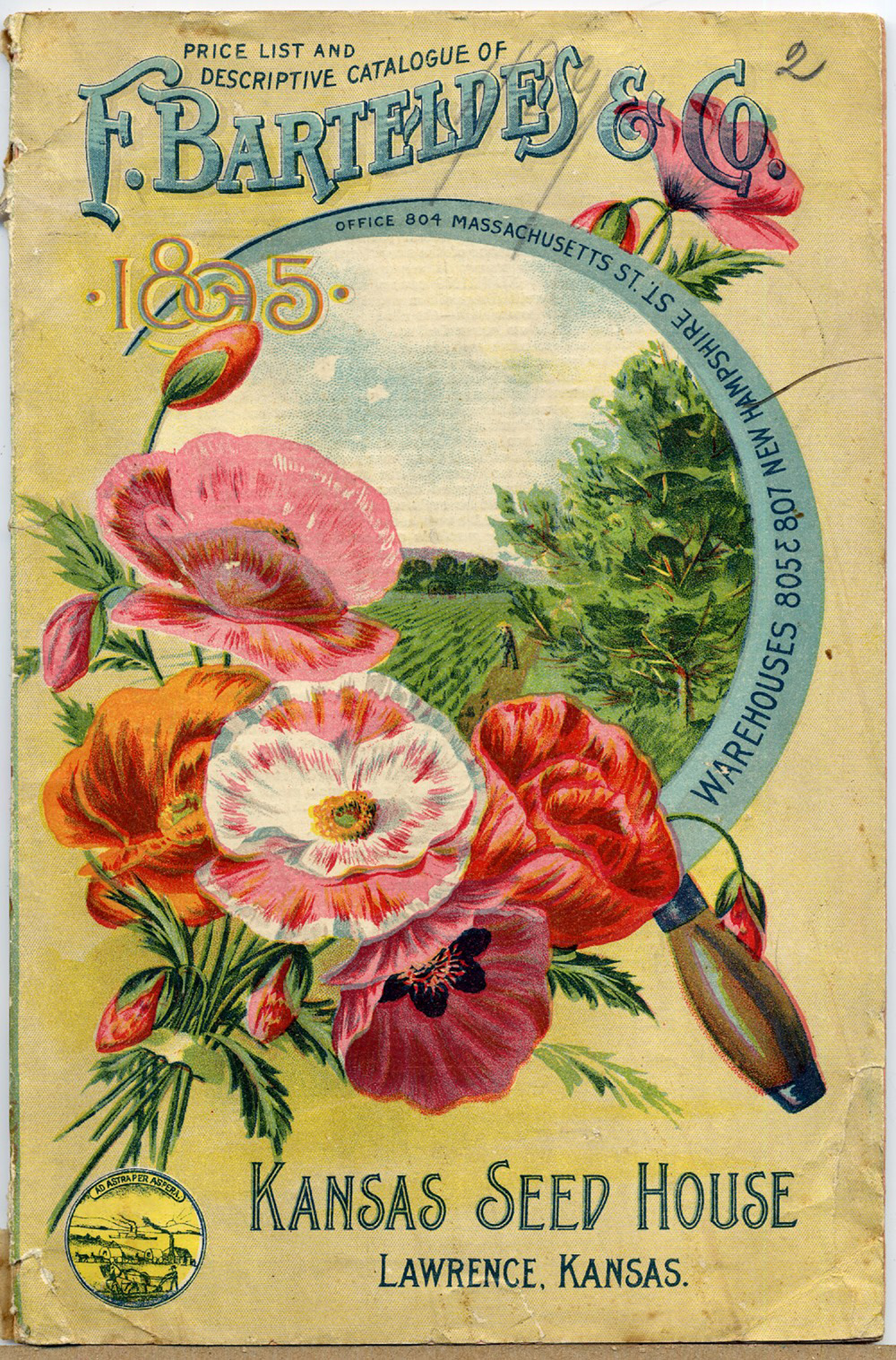 Vintage Pig Clip Art Seed Catalog Covers