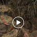 شاهد / فيديو | ليلة كاملة مع مرابطي كتائب القسام وسرايا القدس في أول أيام رمضان...