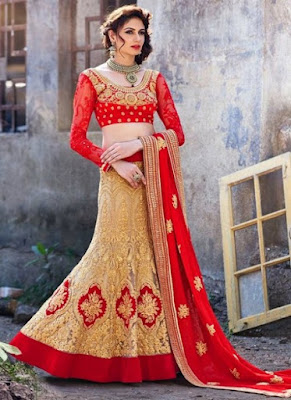Indian-wedding-lehenga-blouse-designs-2017-for-bridal-1