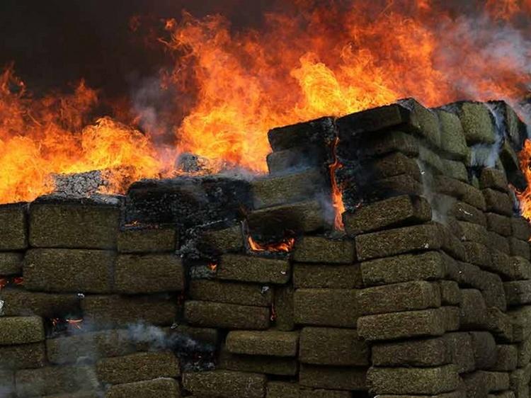 Incinera PGR 11 toneladas de mariguana en Tamaulipas