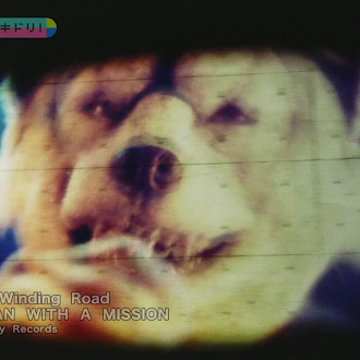 MAN WITH A MISSION - Winding Road [PV + KARA]