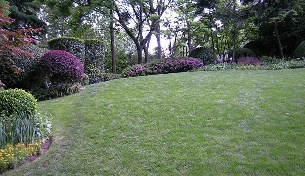 静安公園の小さな丘