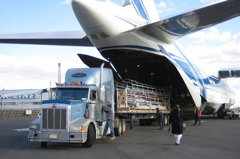 octi.ca/air-freight-services
