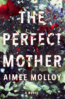 The Perfect Mother by Aimee Moll Review, Best books summer 2018