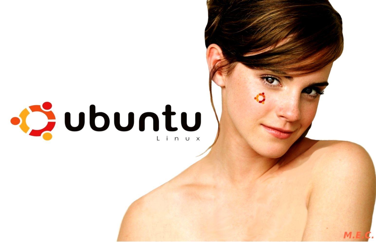 Ubuntu Wallpaper and Background Image 1680x1050 ID122453