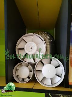 ventilación cultivo marihuana
