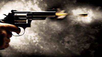 Câmara de Vereadores é alvo de tiros