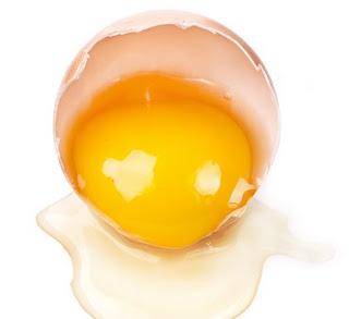 Manfaat Kuning Telur Untuk Rambut Anda