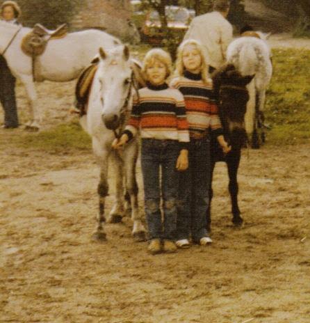 Pferde Tiere Gesundheit Soziales Zeitgeist 2016 10 02