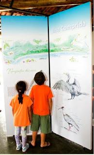 """Exposição de aquarelas """"Aves da Ilha"""" revela o mundo encantador da avifauna do município"""