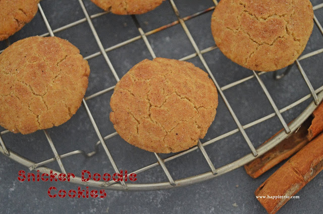 Snicker Doodle Cookies Recipe | Cinamon Sugar Cookies