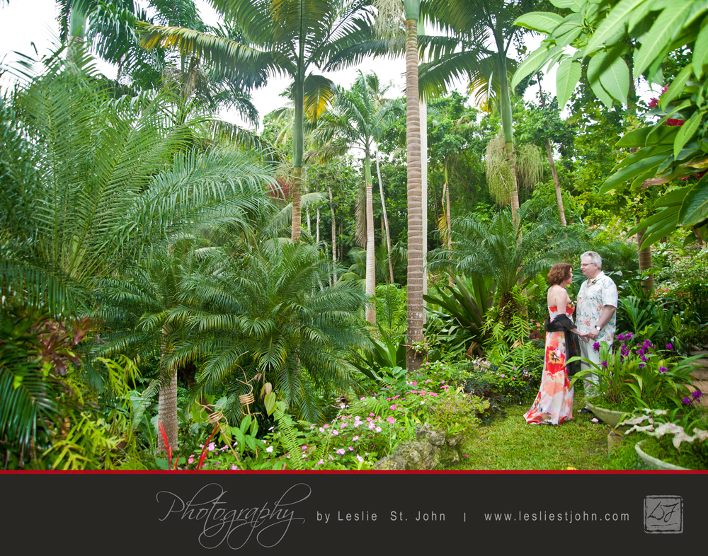 Wedding Couple at Hunte's Gardens