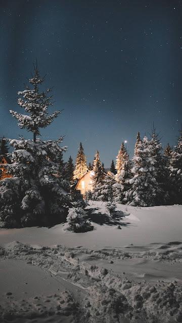 رجل الثلج,شجرة,رسم,بابا نويل,الرسم,ثلج,تعلم,كريسماس,بلورة الثلج,طريقة,تركيا,شجرة الميلاد,شجرة الجبنة,عمل بلورة الثلج,الكريسماس,كرات الثلج,الثلج,شجرة عيد الميلاد,شجرة راس السنة 2019,شجرة الكريسماس,رأس السنة,تفسير الاحلام,أفكار,البريد الصيني,سنافر بالعربي