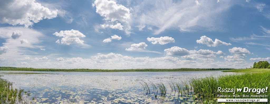 Widok na Jezioro Łukie w Poleskim Parku Narodowym