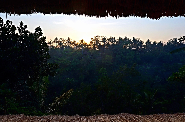 Euriental | fashion & luxury travel | Ubud, morning view of jungle