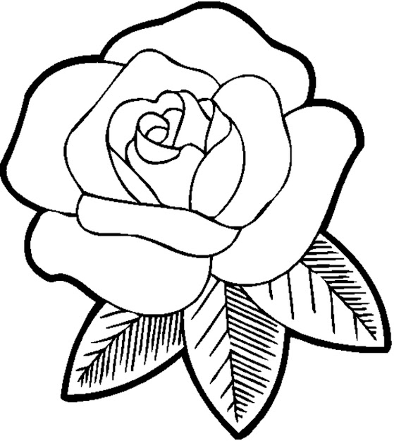 Excellent Rose Flower Coloring Pages For Girls By Flowers Coloring Pages  For Preschoolers