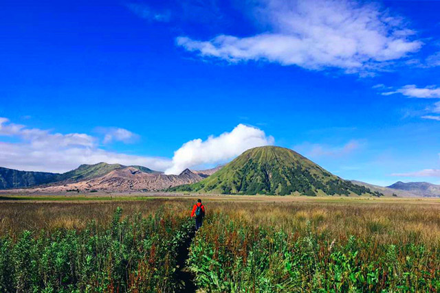 Bromo ijen mountain indonesia tour, we offer best price for bromo ijen tour from surabaya, bromo ijen tour from bali, travel to bromo and kawah ijen, trip to bromo, travel bromo, ijen crater, ijen crater tours, ijen Tour Package, kawah ijen tours, ijen tour and travel banyuwangi, ijen volcano tour, ijen volcano Indonesia, ijen volcano from banyuwangi, ijen travel, kawah ijen banyuwangi, kawah ijen tour, kawah ijen trip, ijen crater tour, ijen crater blue fire, ijen crater guesthouse, ijen crater tour from banyuwangi, ijen crater tour bali, ijen crater tour price, ijen crater night tour, kawah ijen night, ijen blue fire, bluefire ijen crater, blue fire ijen tour , blue fire kawah ijen, ijen blue flame tour, blue flame gunung ijen, blue flame sulphur ijen, blue flame gunung ijen, blue flame kawah ijen volcano.