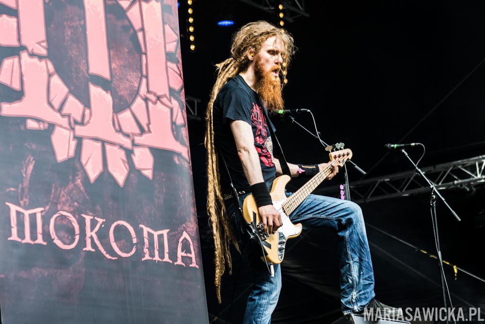 Santtu Hämäläinen Mokoma Provinssi Festivaali 2015 Seinäjoki