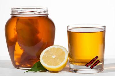 Полезни свойства на   чаената гъба  Комбуча