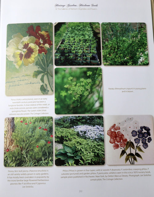 Heritage Gardens Heirloom Seeds