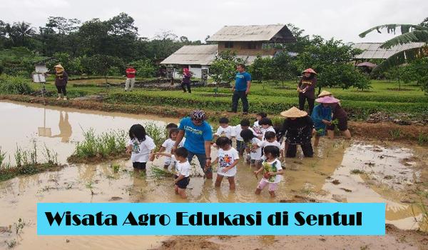 Wisata Agro Edukasi di Sentul Bogor