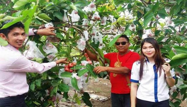 Daftar Lengkap Tempat Wisata Terbaru Kepulauan Bangka Belitung