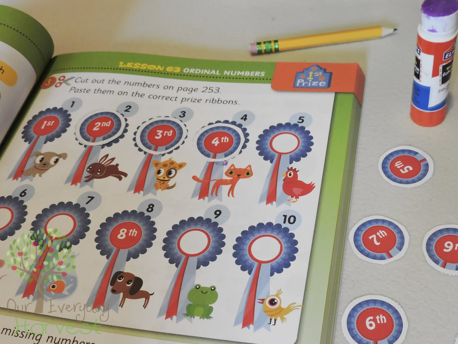 200 Essential Math Skills For First Grade Mathseeds Workbook Review