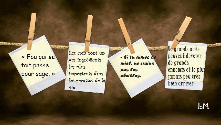 Jolies Citations 4 Phrases Courtes