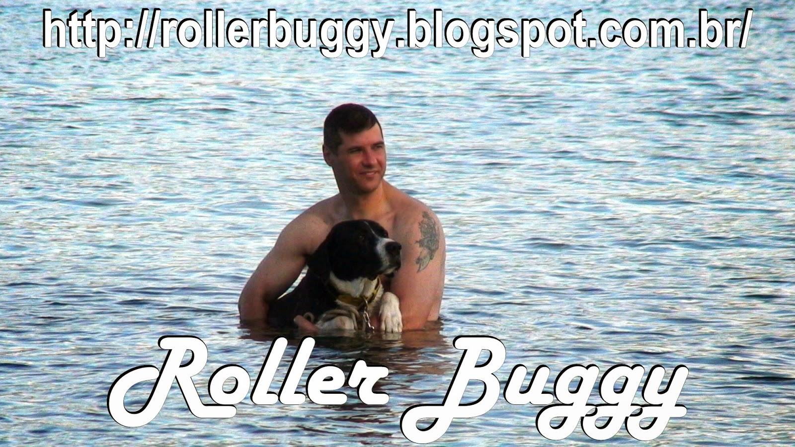 http://rollerbuggy.blogspot.com.br/2015/01/2011-2012-perdi-meu-maior-amigo.html