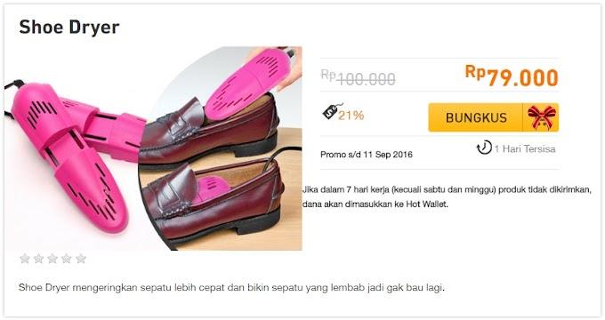 Pengering Sepatu (Shoe Dryer)
